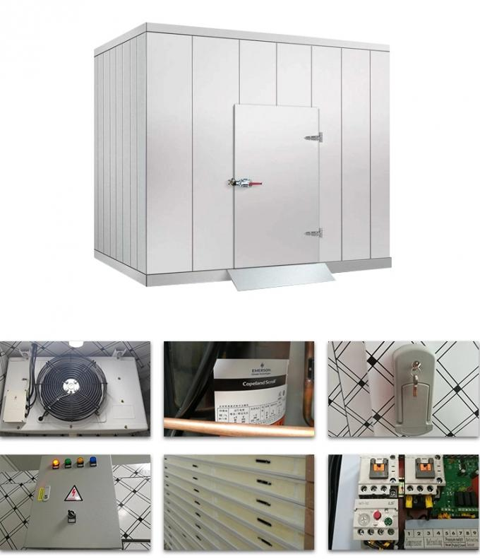 Customized fresh keeping quick frozen modular cold room 230V 1ph 50/60Hz refrigeration equipment