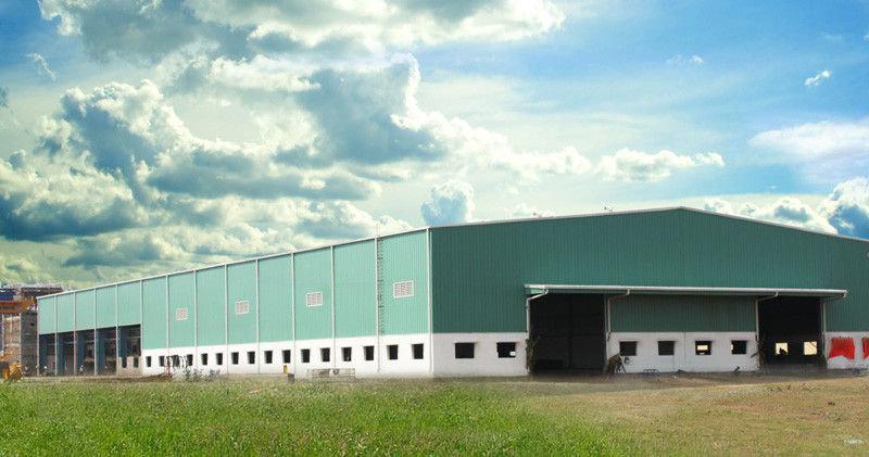 Professional Pre Engineered Steel Buildings Design Manufacturing Construction Installation